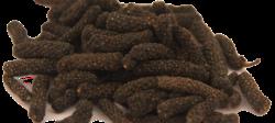 pepper_long